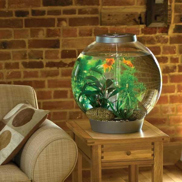 фен шуй гостиной аквариум