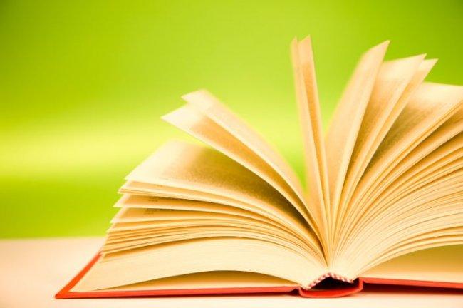 удачный дом книги