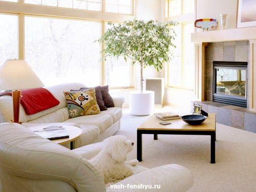 Освещение по фен-шуй — как активировать зоны в доме
