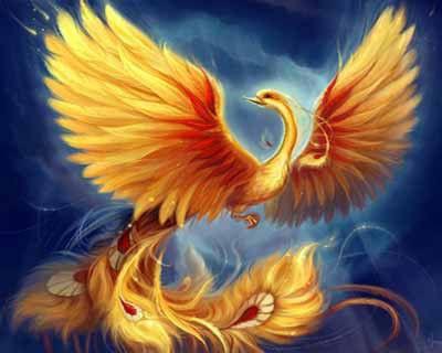 символы успеха феникс