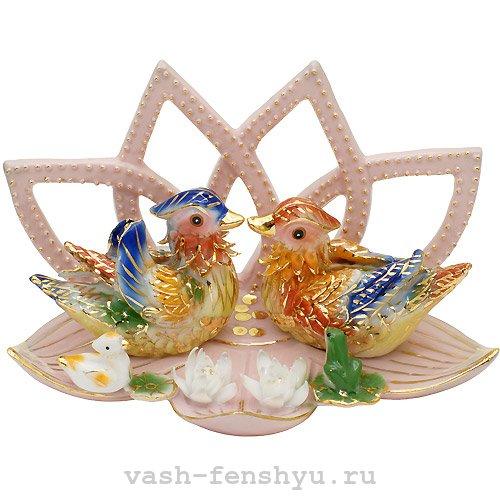 утки-мандаринки символ фото