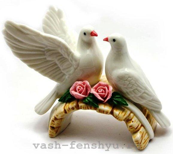 зона любви голубки