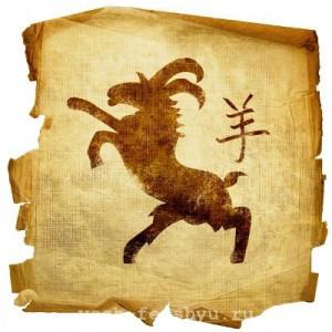 прогноз по фен шуй год козы