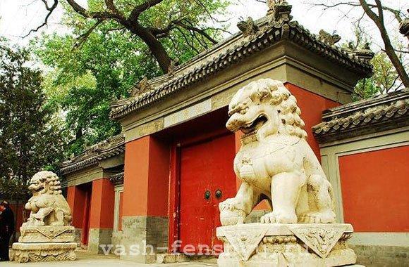 собачки фу фен шуй возле храма