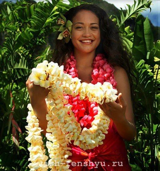 плюмерия цветок гавайские леи